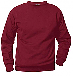 A+ Crewneck Sweatshirt